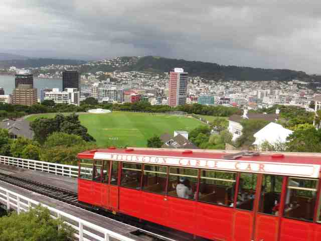 Wellington Cable Car View of City and Harbor